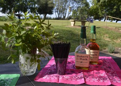 mint julep table